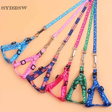 Nylon Small Dog Cat Collar and Leash 1.0cm Width Pet Harness Leads for Puppy Dogs Cats Cheap Pet Supplies Chihuahua Product(China)