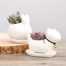 Cute Animal Potted Flowers Gardening Succulents Planter Pot White Ceramic Flowerpot Home decoration