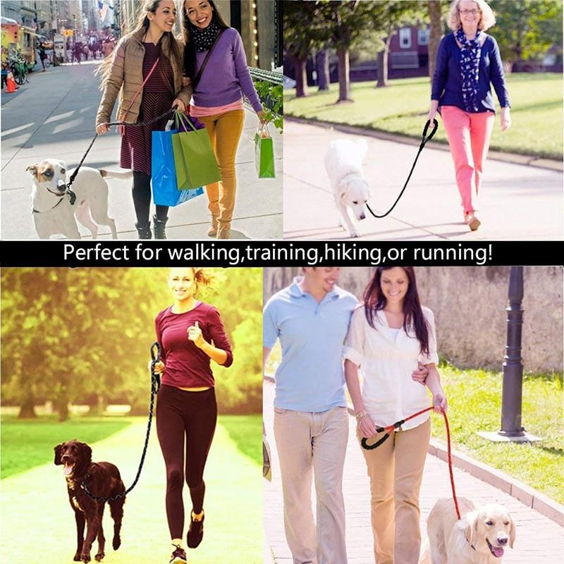 Reflective Dog Leash Image