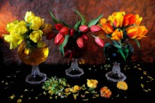 Home decoration flowers petals leaves tulips vase beautiful paint Silk Fabric Poster Print HH16(China)