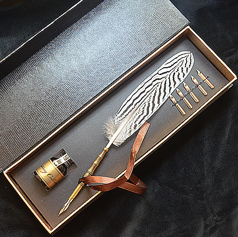 Lophura Nycthemera Feather Fountain Vintage Pen with Gift Box 1 Ink 5 Nibs<br>