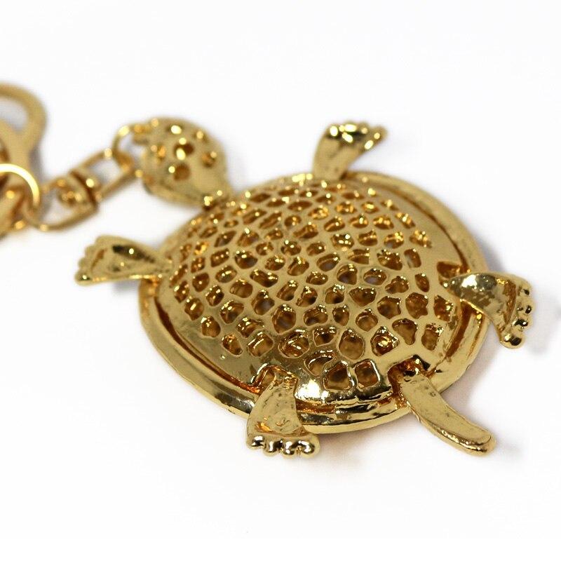 JN-tortoise-5