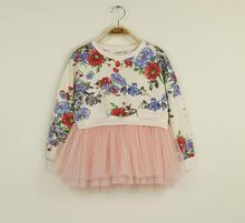 Promotion Baby Girls Floral Mesh Dresses, Princess Kids Fall Long Sleeve Print Sweet Dress, wholesale