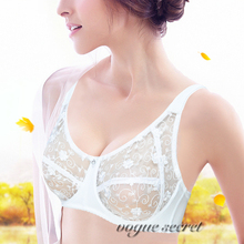 New Lace Bra Women Embroidery Floral Plus Size Transparent Sexy Lingerie Brassiere Mesh Bras 80 85 90 95 100 B C D DD E F Cup(China)