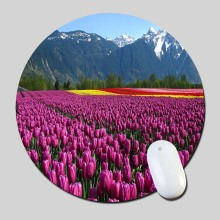 Beautiful Tulip Flowers Garden Full Hd 2016 Round Gaming Mouse Mats Mice Pad for Size 200*200*2mm