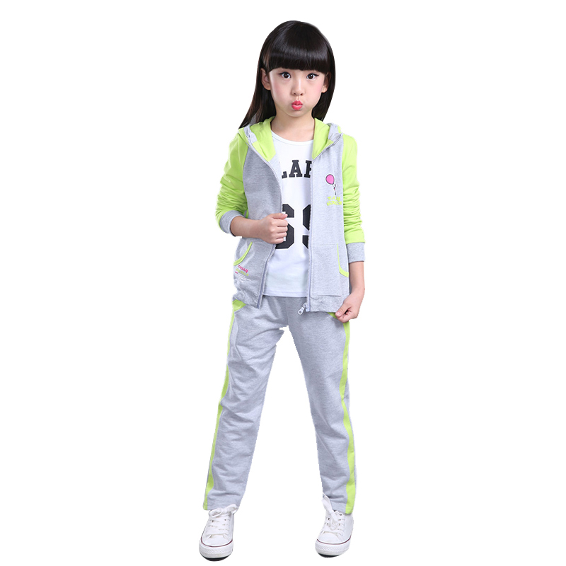 Autum Sports Suit For A Girl Zipper Cardigan Coat Suits Two-piece Ropa Ninos Hooded  Long Sleeve Sets Of Clothes For girls <br><br>Aliexpress