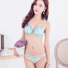 3D shell embroidery samll young girls underwear women fashion bra briefs set sexy lace push up brassiere and transparent panties
