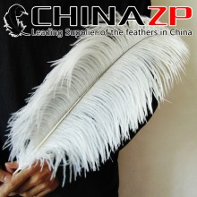 CHINAZP Factory 40~45cm(16~18inch) Length 100pcs/lot Top Quality Snow White Ostrich Drab Feathers