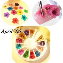 Wheel 12 Color Dried Dry 3D Flower Tips Nail Art Decoration Design Manicure DIY