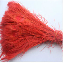 Free shipping 100 PCS red  dyed peacock feather 10-12 inch / 25 to 30 cm peacock feathers for wedding decorations