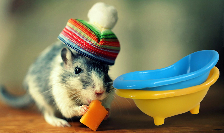 Mini Hamster Gerbils Mice Bathtub Bath Tub Small Pet Bathing Clean SA