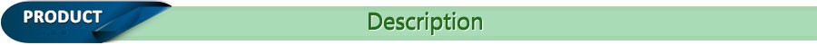 p-descrip revise