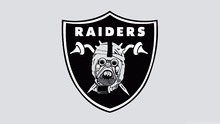 Oakland Raiders Logo Flag 3FTx5FT 100D Polyester 90x150 cm White Sleeve Sealed Double Metal Rings 45