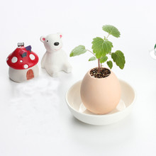 1pcs family Small Ornaments Egglings-Plants in an Eggshell Lucky Egg Mini potted Plant Bonsai DIY Gags & Practical Jokes toys(China)