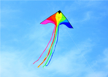 free shipping high quality rainbow phoenix kite with handle line outdoor flying toy nylon ripstop children kite surf parachute