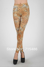 CPAM Free Drop Shipping New arrival Classic Cheetah Leggings Tiger Leopard Backing Slim Stovepipe printed winter leggings(China)
