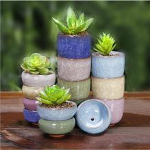 1 piece (6x6x3cm please look at the size, very cute little more meat pots) Binglie colorful ceramic pots small mini fleshy pots