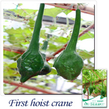 Buy 2 Get 1!(Can accumulate ) 1  Pack 4 Seed Of Odd Shape Beautiful Lovely Green Crane Head Bottle Gourd B072