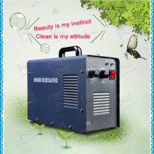 Hot Sale 6G Ceramic Portable Air Purifier Fruit Cleaner Sterilizer +CE(China)