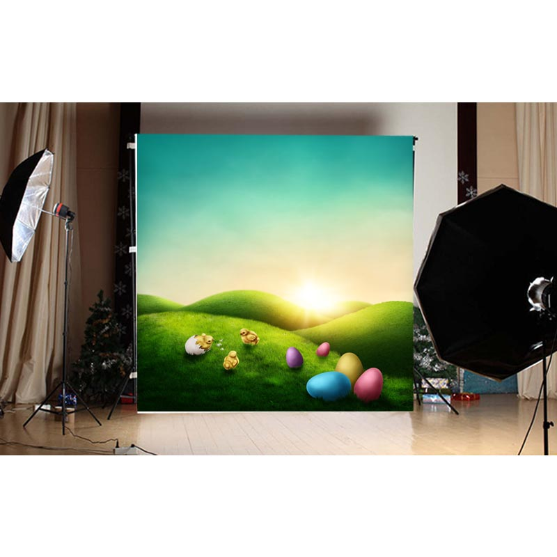 1.5X1.5M multi-colored easter eggs and green grass and blue sky printed photography backdrops for spring theme photo GE-116<br><br>Aliexpress