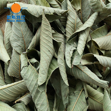 100g Chinese herb tea 4 bags organic dried guava leaf&dried guava leaf tea&Psidium guajava leaf tea&dried guava leaves