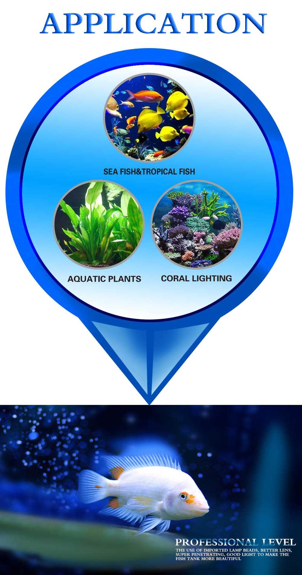 Aquarium led lighting Dimmable lamp Fish bowl light Marine Fish tank Coral lights High brightness Penetrating strong FCC CE ROHS (3)