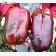 100 seeds/pack Giant Sweet Pepper Seeds , Easy Growing Paprika Chili Seeds DIY Home Garden Vegetable Plant