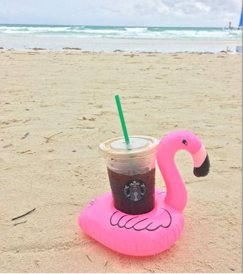 Mini Inflatable Flamingo (23)