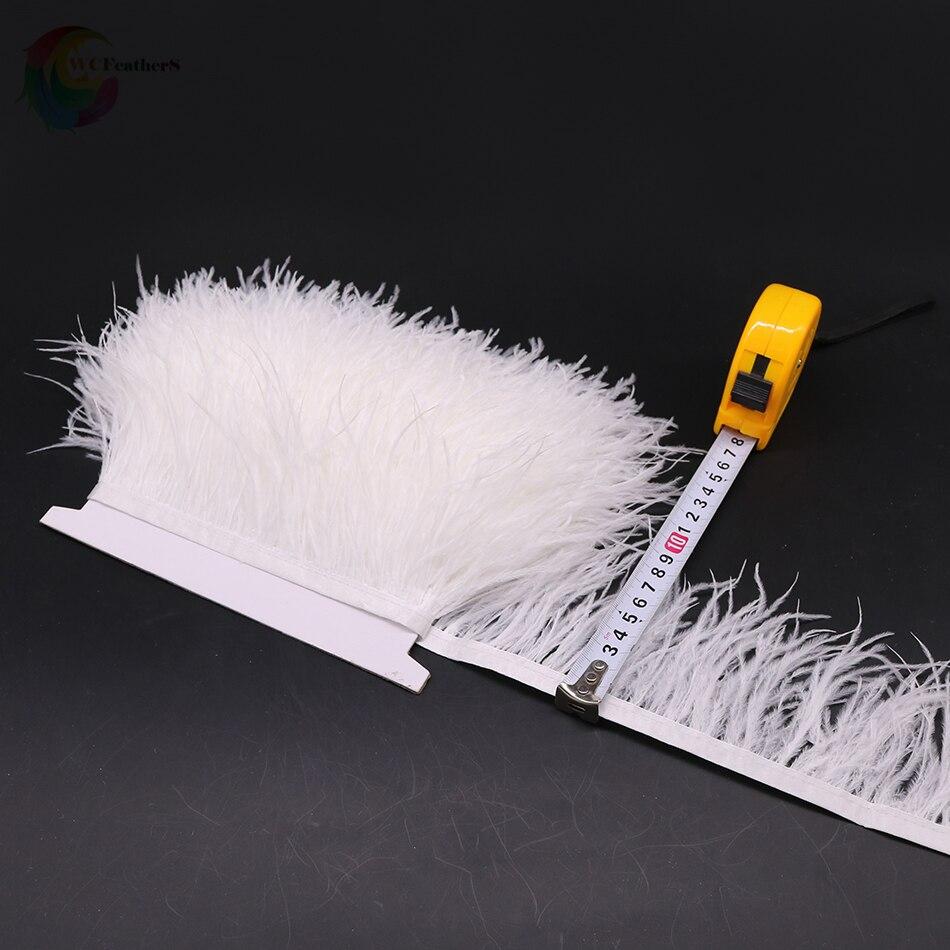 O12 8-10cm ostrich trims 5