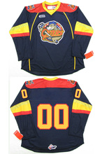 Erie Otters # Custom your name and number Stitched Hockey Jersey