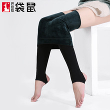 2017 Medias Pantis Woman Plus Thickening Leggings Precious Stones Super Soft Nylon Anti Pilling Underwear Women Wear One Pants(China)