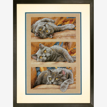 Top Quality Hot Sell Lovely Counted Triptych Cross Stitch Kit Max the Cat, Max le chat Dim 70-35301(China)