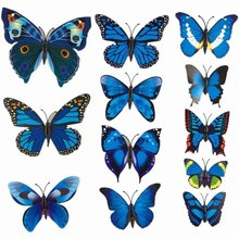 12 Pcs/Lot PVC 3D Magnet Butterfly Wall Stickers Butterflies Decors for Wedding Party Home Kitchen Fridge Decoration(China)