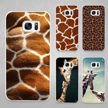 Giraffe Cubs Hard White Coque Shell Case Cover Phone Cases for Samsung Galaxy S4 S5 S6 S7 Edge Plus(China)