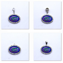 Pendant Charms Rhinestone NCAA Florida Gators Charms for Bracelet Necklace for Women Men Basketball Fans Paty Fashion 2017