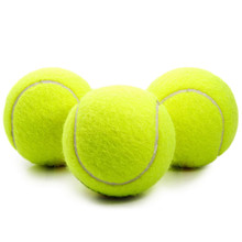 Environmentally Practice Tennis Ball Beach Dog Pet Toy Sports Tournament Outdoor Fun Cricket Pet Toy Tennis Ball Dog Chew Toy(China)