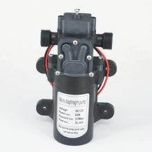 "1/2"" BSP Male DC 12V/24V 60W Electric Diaphragm Pump self-priming booster Backflow Control for Home garden Car washer 300L/H"