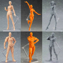 New PVC She He Figuarts Archetype Body Bodykun Action Figure Model Art Toy