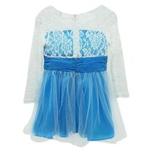 Newest Girls Princess Lace Fancy Dress Long Sleeve Baby Crochet Floral Tulle Dresses(China)