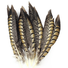 20Pcs 20-25cm Long Natural Pheasant Tail Feathers for DIY Craft Costume Hat Store 48
