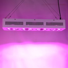 Stocks in USA Favorable 800w Led Grow Light Kits for Greenhouse Hydroponic Systems Factory Direct Supply with 2 years warranty