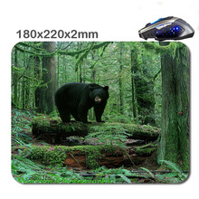 Black bears in redwood national park Custom Non-Slip Durable Computer And Laptop Games Rubber Soft Mouse Pad As Gift220*180*2 Mm