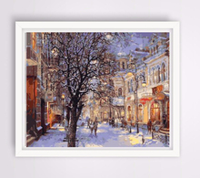 Snow scene Street wall art flower pictures cuadros decoracion acrylic oil paintings on canvas 40*50cm painting by numbers TF72(China)