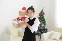 about 35cm hat teddy bear plush toy dressed Christmas clothes bear doll christmas gift b1462(China)