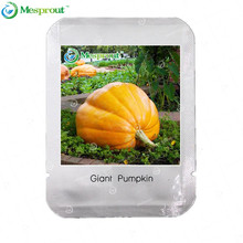 Professional Packing Giant Pumpkin Seeds Very Heavy Atlantic Giant Pumpkin Melon seeds Organic Vegetable Seeds - 10 pcs