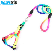 Rainbow Dog Harness And Leash Set 120cm Long Durable Nylon Dog Leash Pet Walking Lead S/M/L(China)