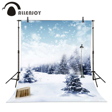 Allenjoy 6.5ftx10ft Snow Background Photography backdrops pine street light ice Studio For baby Interior romantic winter Photos(China)