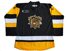 Custom Hamilton Bulldogs  your name and number Stitched Hockey Jersey or Blank Jersey