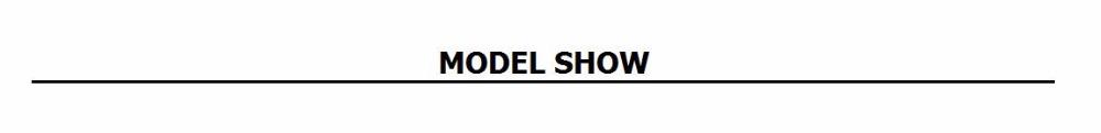 1 model