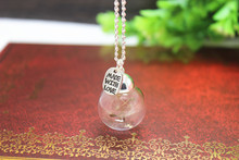 "10pcs/lot antique silver tone glass bottle natural real dandelion seed necklace silver ""made with love"" charm pendant necklace"